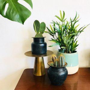 Gouden plantenstandaard messing