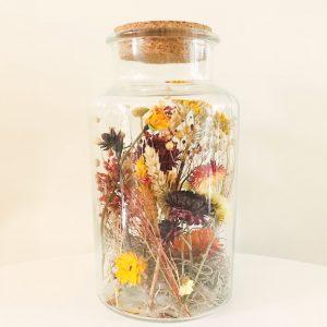 Droogbloemen in glas Herfstkleuren